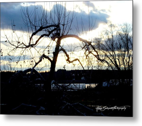 Silhouette In Sunset Metal Print by Ruth Bodycott