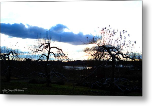 Silhouettes In Cerulean And Cobalt Metal Print by Ruth Bodycott