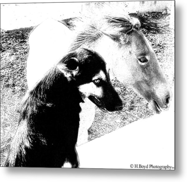 Similar Spirits Metal Print by Heather  Boyd