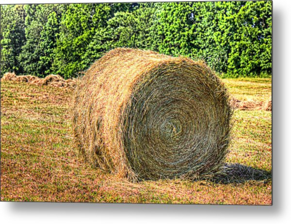 Single Bale Metal Print by Barry Jones