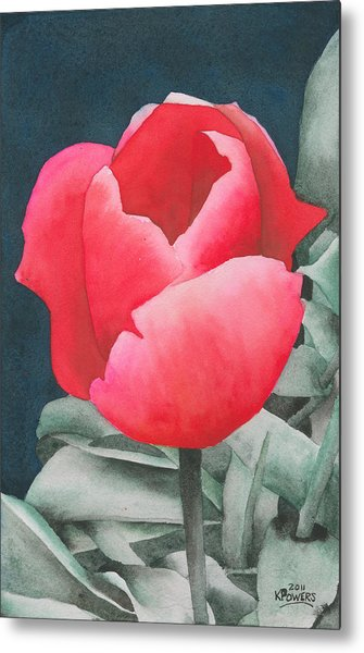 Single Tulip Metal Print