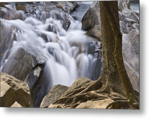 Sinks Cascade And Tree Metal Print