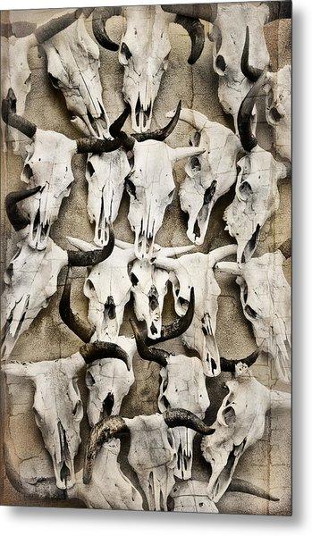 Skull Art Metal Print