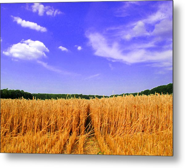 Sky Over The Field 3 Ae  Metal Print by Lyle Crump