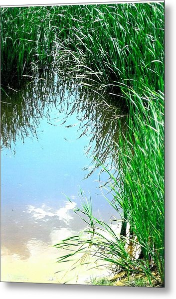 Sky Reflected Metal Print by Suzanne Fenster