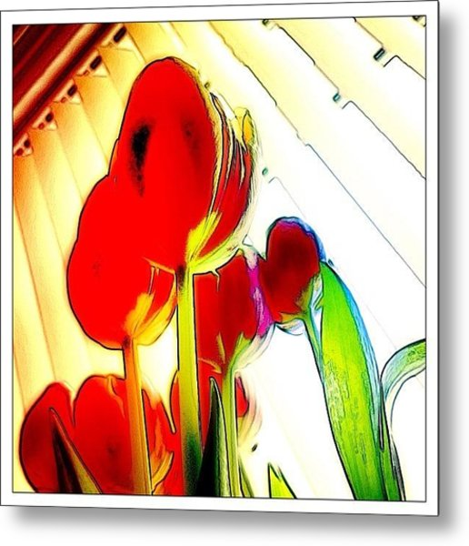 Skywards Metal Print