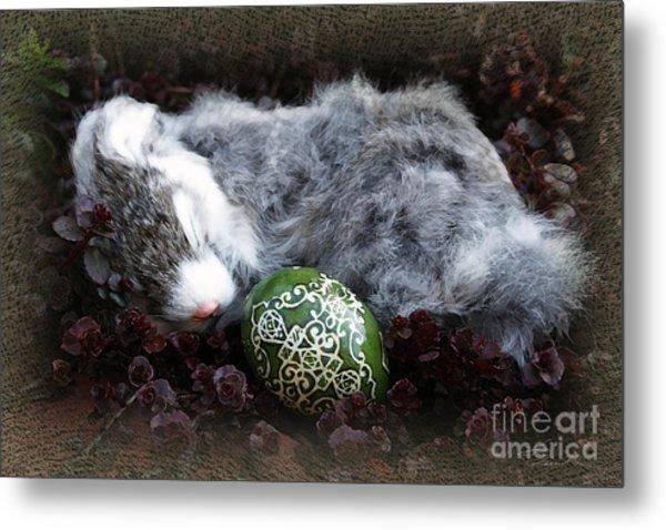 Sleeping Easter Bunny Metal Print by Danuta Bennett
