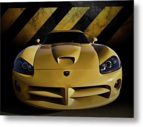 Snake Crossing Metal Print