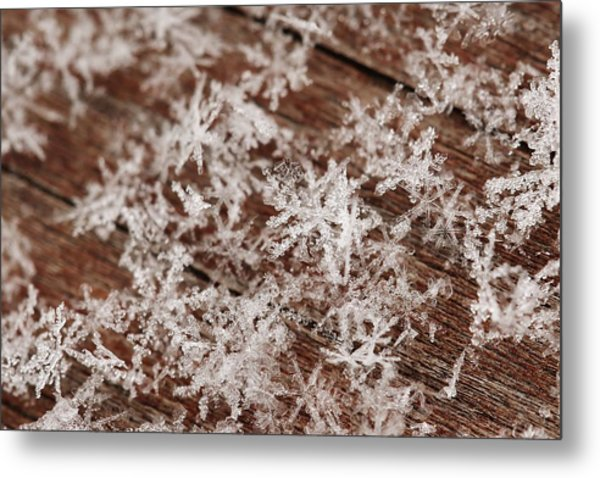 Snow Close Up Metal Print