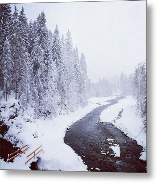Snow Landscape - Trees And River Metal Print