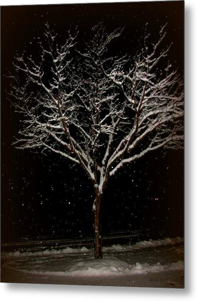 Snow Shower In The Night Metal Print