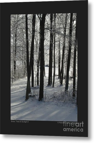 Snow Trees And Sunlight-ii Metal Print