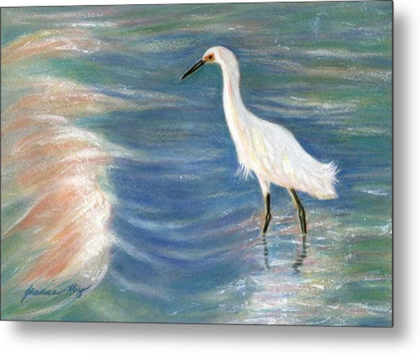 Snowy Egret At Sunset Metal Print