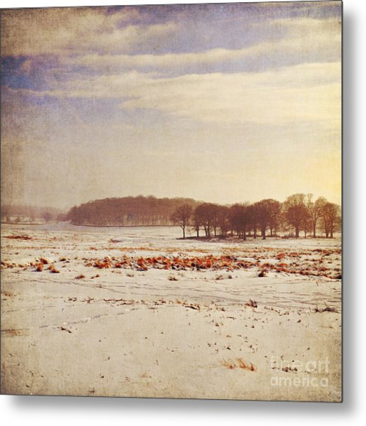 Snowy Landscape Metal Print