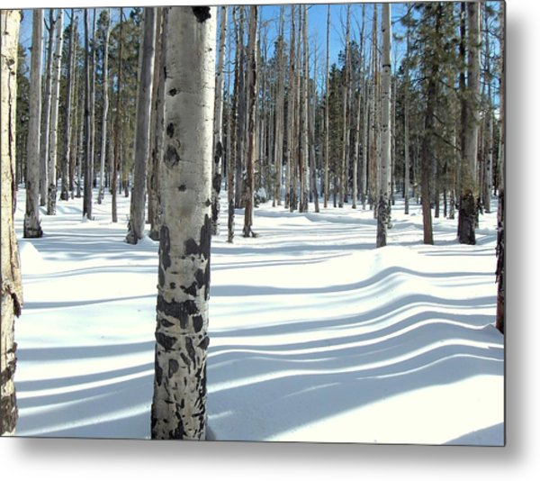 Snowy Shadows Metal Print