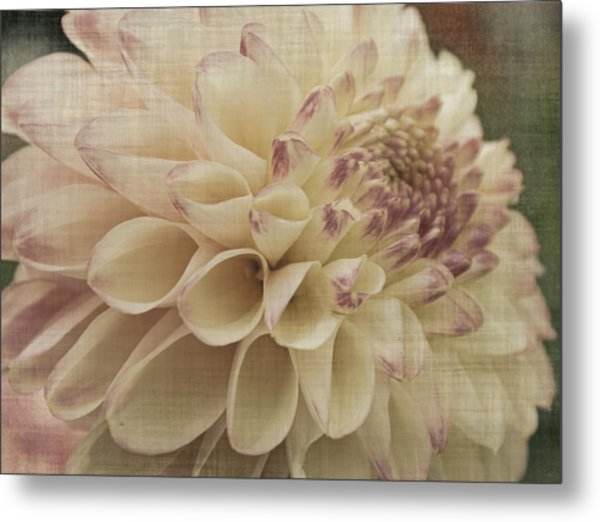 Soft Lady Metal Print by Terrie Taylor