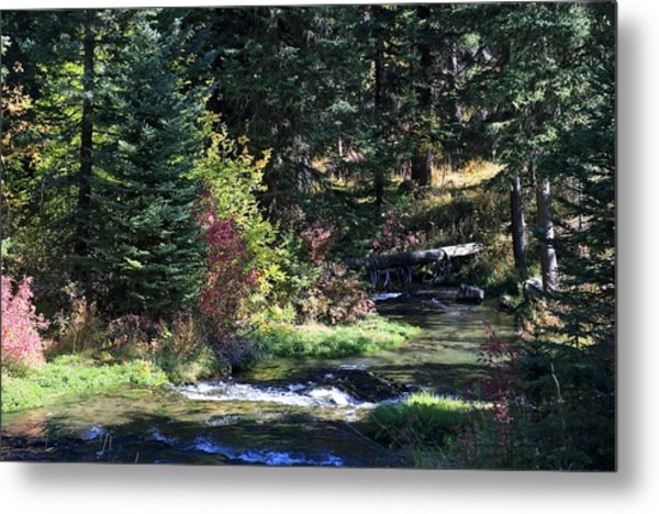 Spearfish Canyon Metal Print