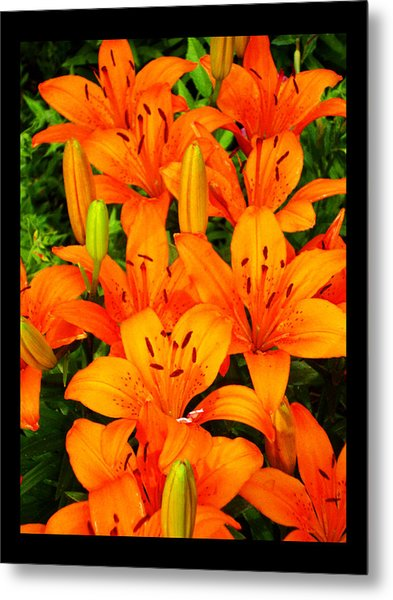 Spiritual Bouquets At St. Francis Cathedral Metal Print