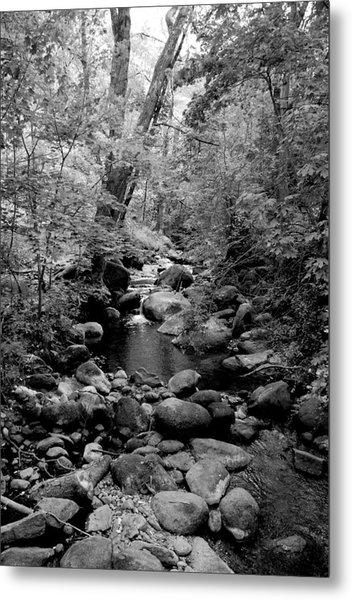 Spring Creek Metal Print