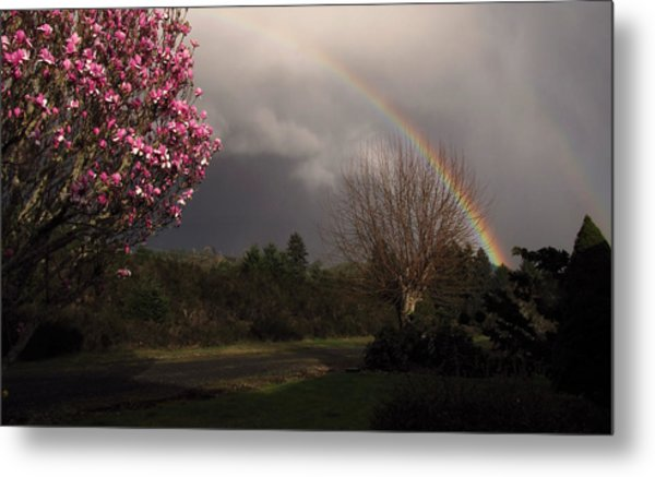 Spring Rainbow Metal Print