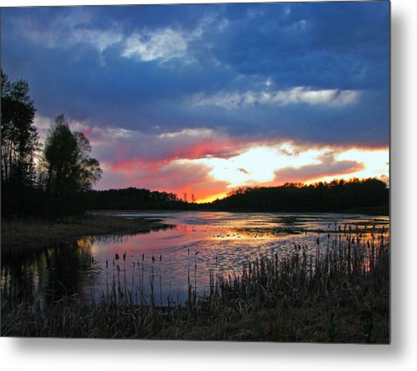 Spring Sunset Metal Print by Sandra Longstreet