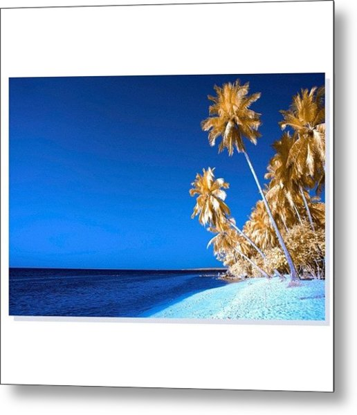 #squaready  #nationalgeographic_ Metal Print
