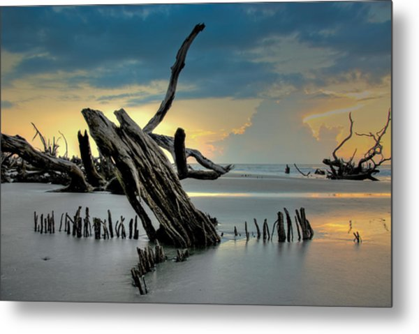 Metal Print featuring the photograph Sticks In The Sand by Francis Trudeau