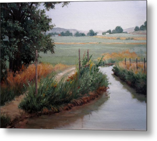 Still Water-irrigation Metal Print by Victoria  Broyles
