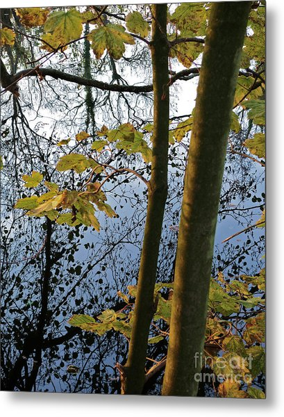 Still Waters In The Fall Metal Print