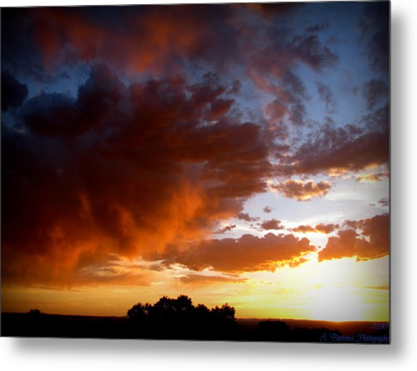 Stormy Sunset Over A Tree Canopy Metal Print by Aaron Burrows