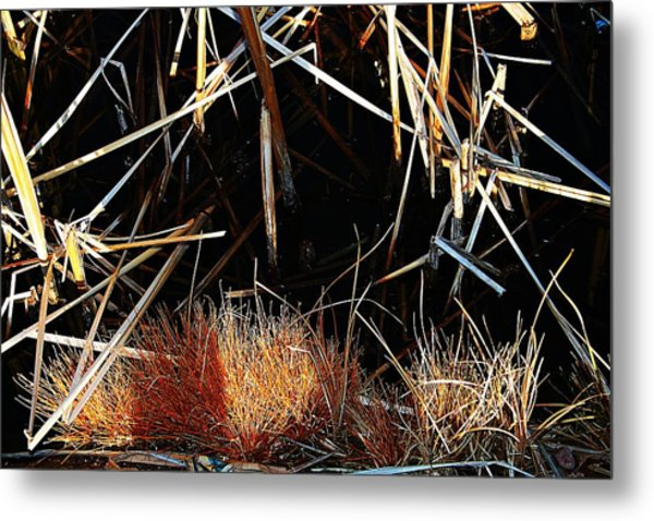 Straw Metal Print by Susana Sanchez Giraud