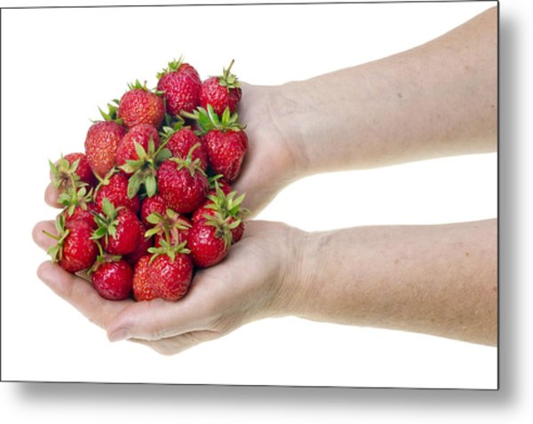 Strawberries In Hands Metal Print