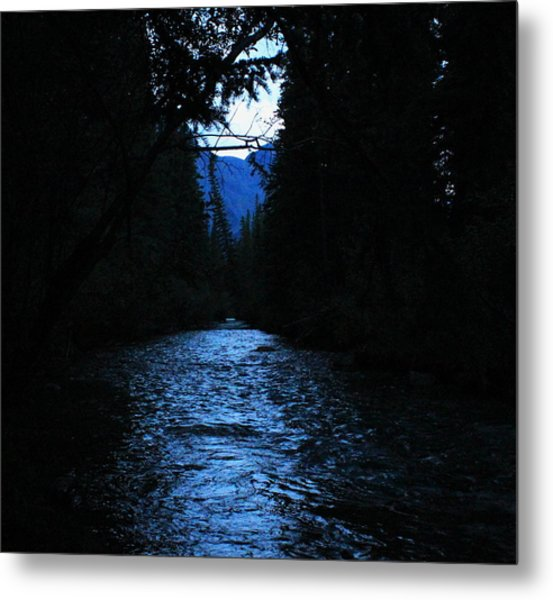 Stream In The Deep Dark Forest Metal Print by Donna Barker
