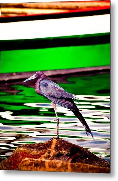Stretching Bird Metal Print