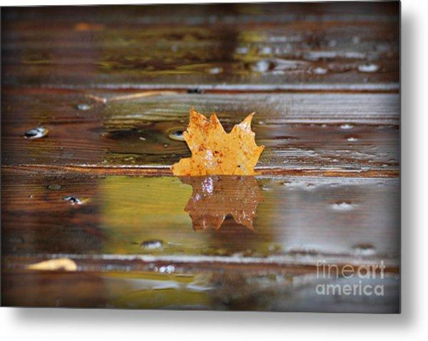 Stuck Maple Leaf Metal Print
