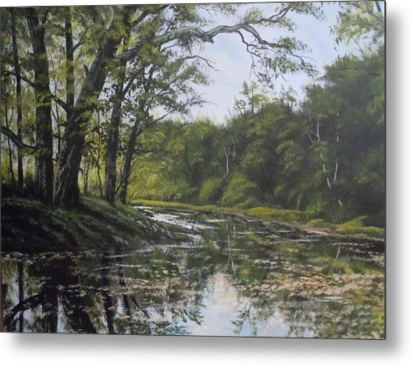 Summer Creek Reflections Metal Print by James Guentner