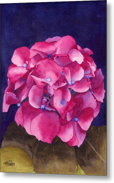 Metal Print featuring the painting Summer Hydrangea by Ken Powers