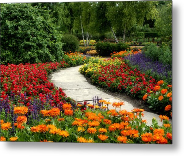 Summer In Cantigny 1 Metal Print