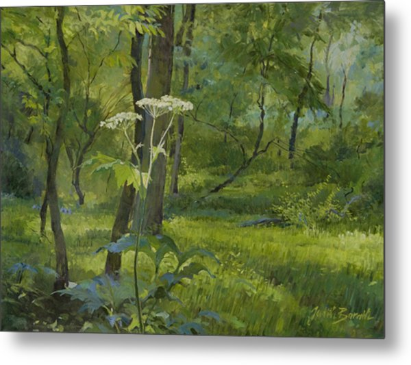 Summer In Fullersburg Woods Metal Print