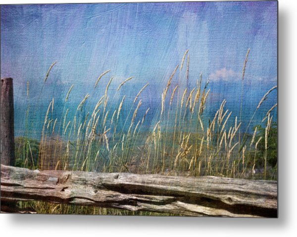 Summer Rendezvous Metal Print