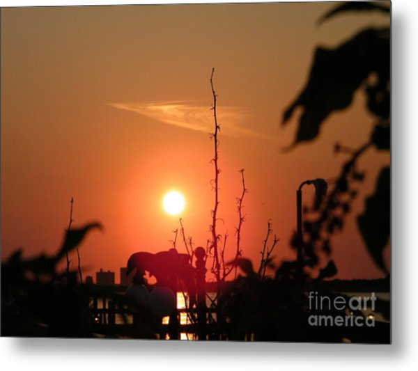 Sun Down Metal Print by Laurence Oliver