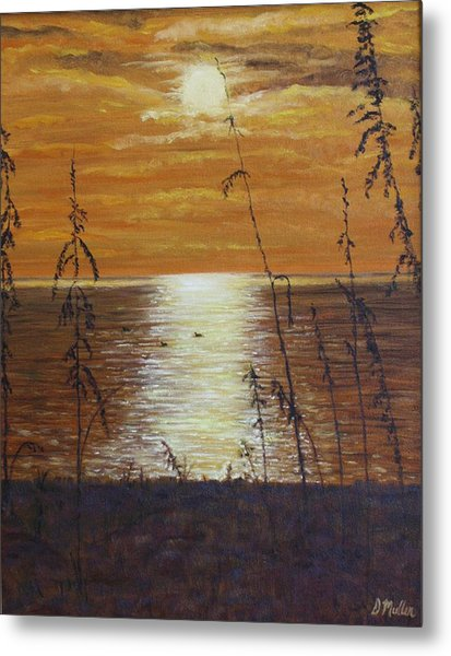 Sun Setting In Florida Metal Print by Donna Muller