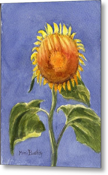 Sunflower Glowing In The Sun Metal Print
