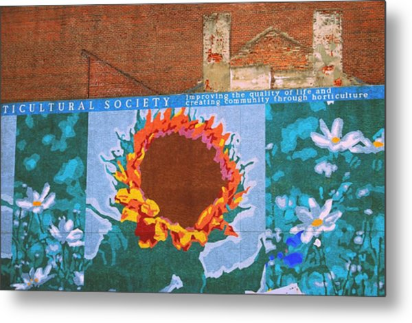 Sunflower In Phili Metal Print by JAMART Photography