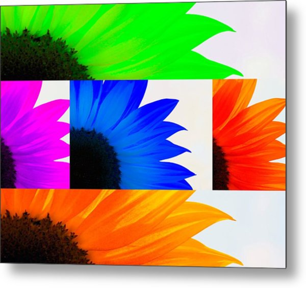 Sunflower Interrupted Metal Print