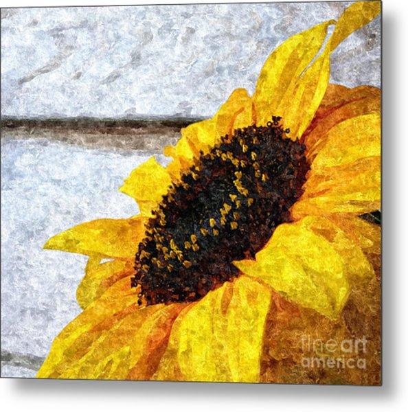 Sunflower Paint Metal Print by Slavi Begov