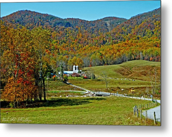 Sunny Day At The Blue Ridge Parkway Metal Print