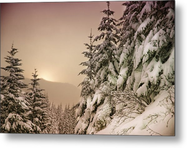 Sunrise At Mt Rainier Metal Print by Nichon Thorstrom