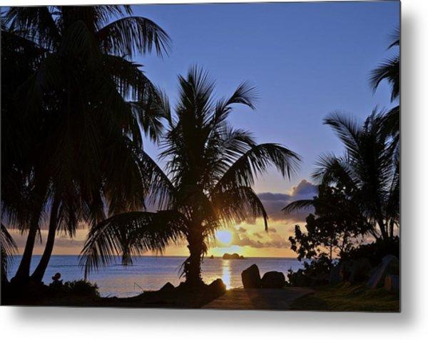Sunrise In Paradise Metal Print by Nancy Rohrig