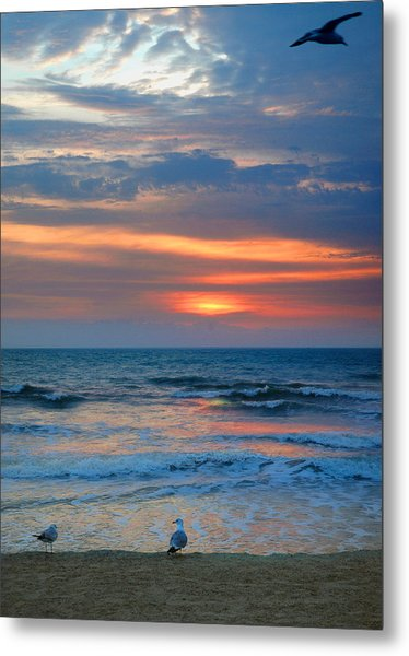 Sunrise With The Gulls Metal Print